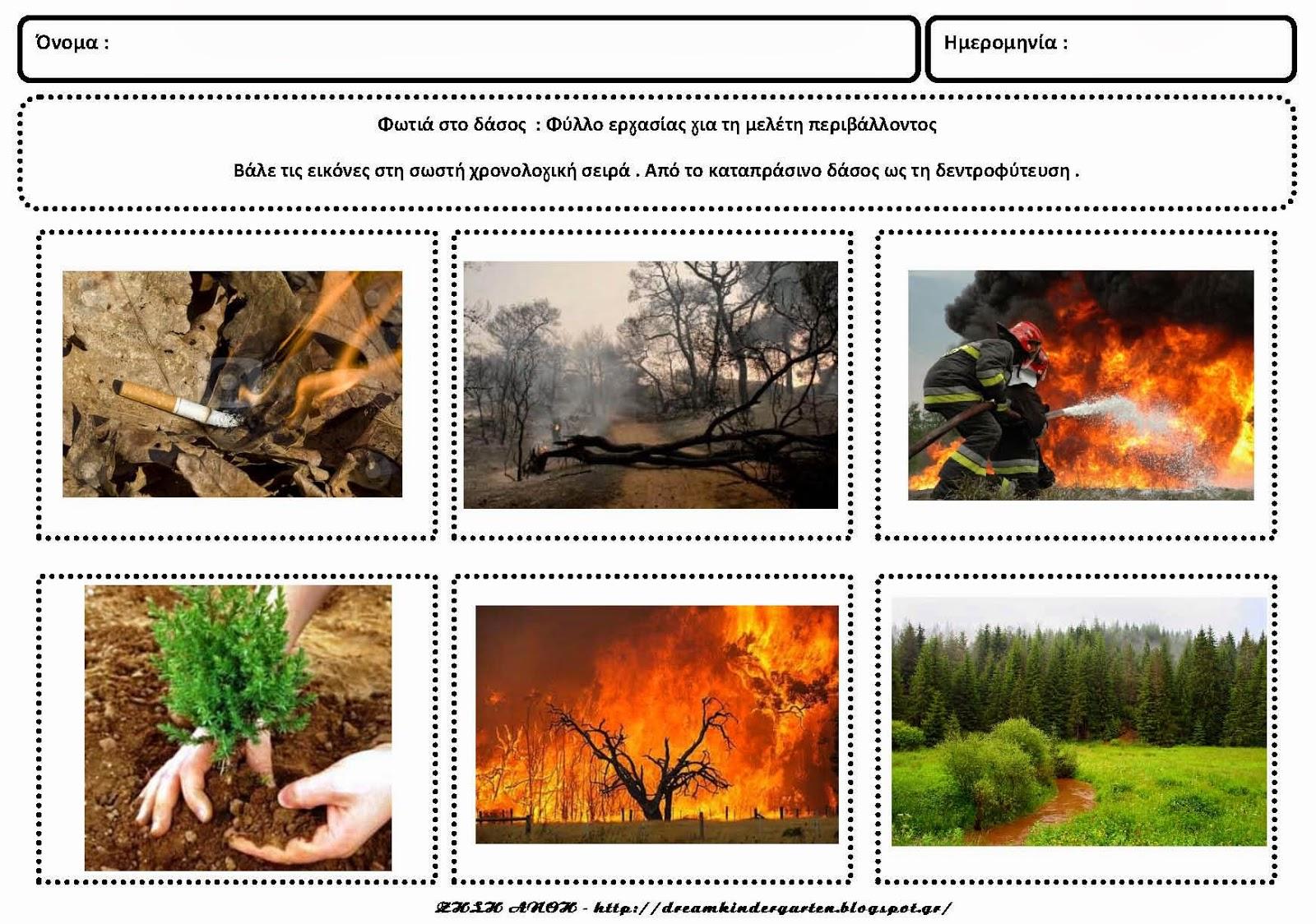 Πυρκαγιές στα δάση