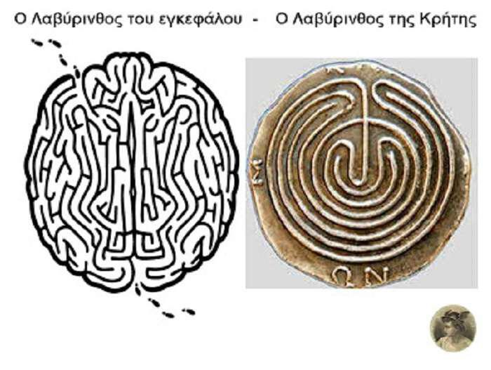 λαβύρινθος Κρήτης και εγκεφάλου